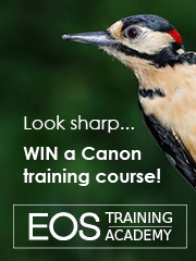 Win a free photo training course...